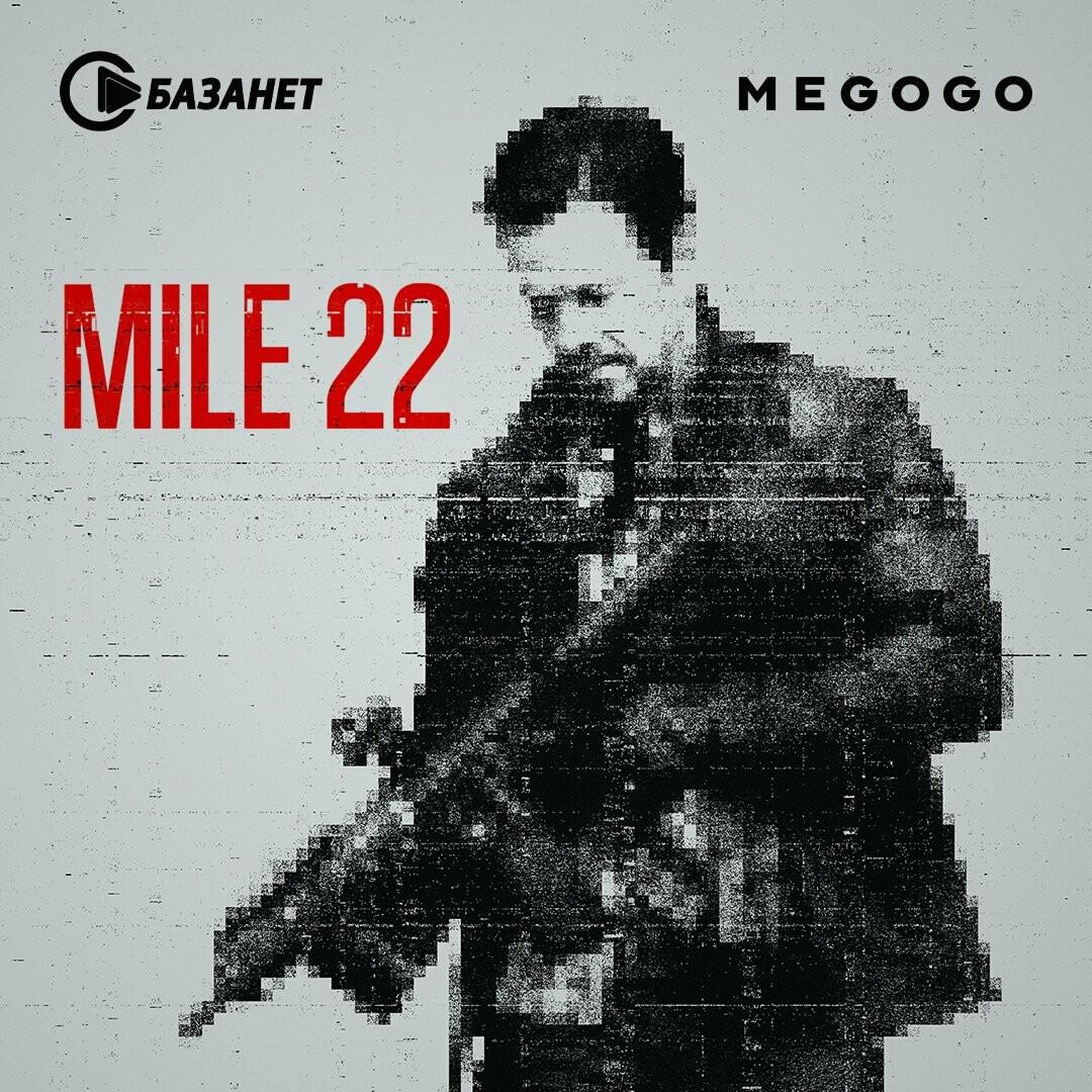mile-221080h1080_608bb1425702b.jpg