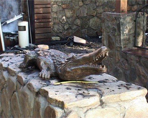 Бедный погорелец крокодил Годзи