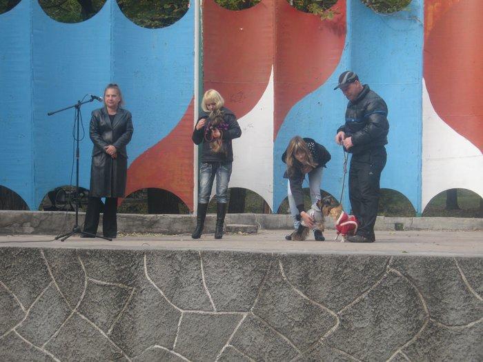 На выставке собак в Мариуполе мужчина с карманной собачкой сорвал овации зрителей (ФОТО), фото-15