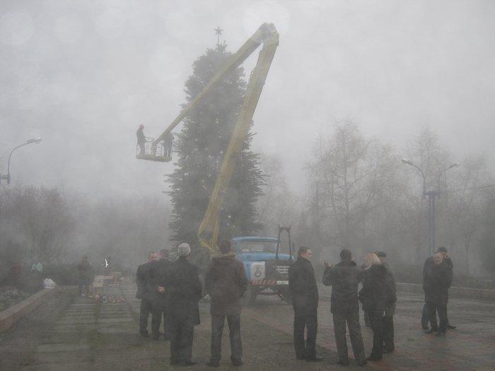 Елки в тумане. Мариупольские чиновники готовят город к Новому году (ФОТО), фото-1