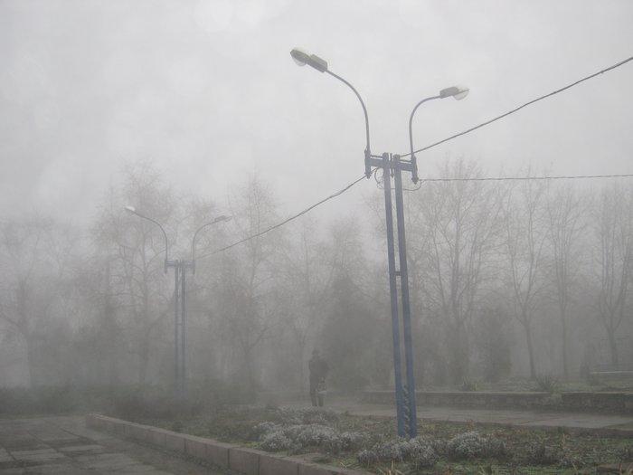 Елки в тумане. Мариупольские чиновники готовят город к Новому году (ФОТО), фото-7
