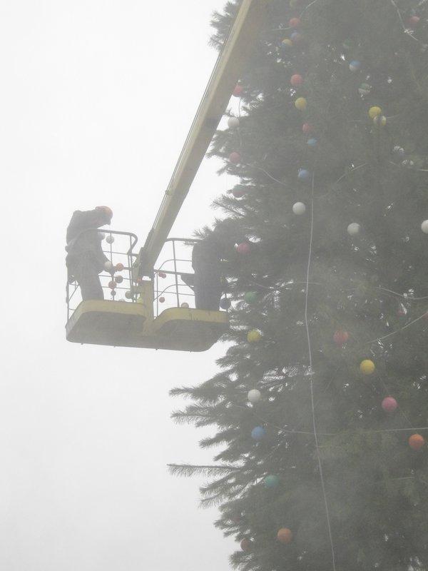 Елки в тумане. Мариупольские чиновники готовят город к Новому году (ФОТО), фото-4