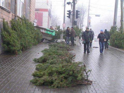 Мариуполь охватила новогодняя лихорадка (Фоторепортаж), фото-1