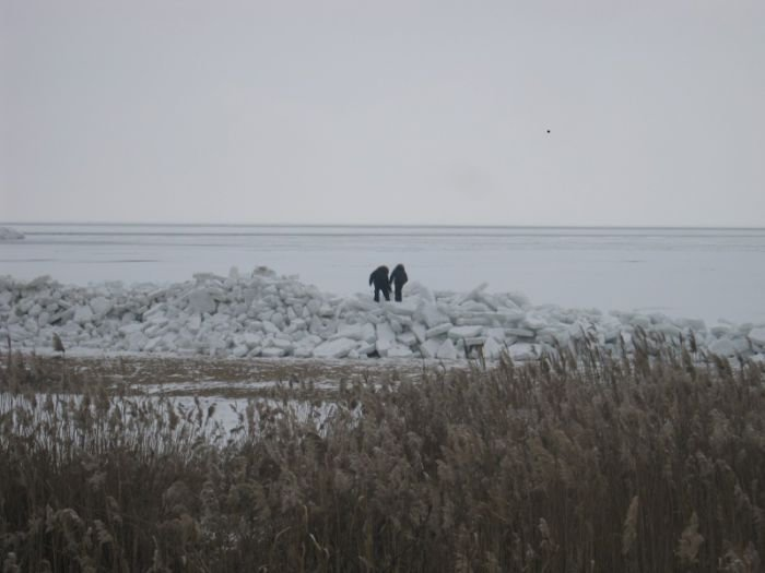 Азовское море покрылось ледяными торосами (ФОТО), фото-8