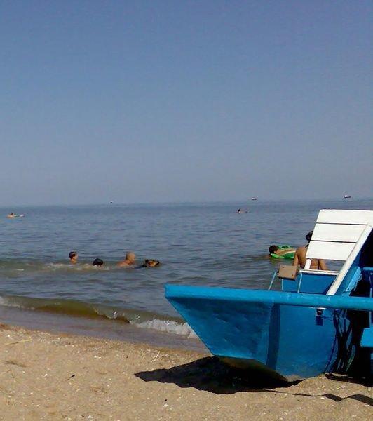 Собакам море по колено? На мариупольских пляжах люди купаются вместе с собаками(ФОТО), фото-1
