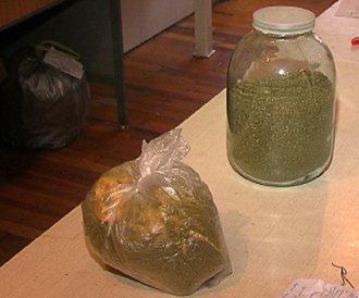 Мариуполец  попался на хранении  марихуаны (ФОТО), фото-1