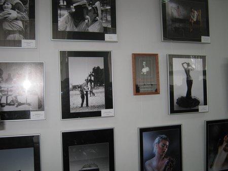 Мариупольский фотоклуб «Берег» показал Африку, горы, женские прелести и фотоаппараты (ФОТО), фото-4