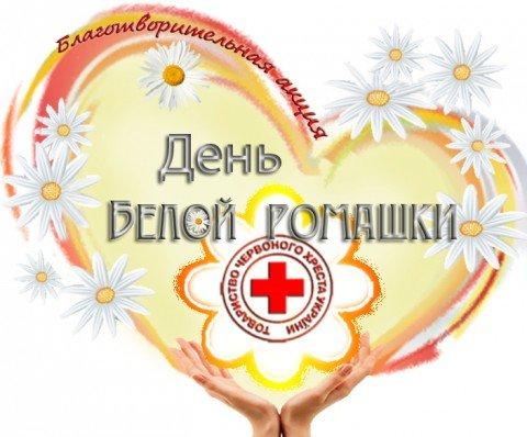 В Мариуполе Красный Крест возрождает Белую ромашку, фото-1