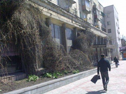 В Мариуполе началась реконструкция Дворца бракосочетаний (ФОТО), фото-1