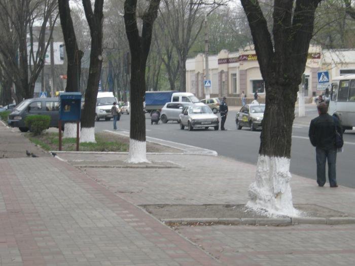 В Мариуполе на пешеходном переходе сбили женщину (ФОТО), фото-1
