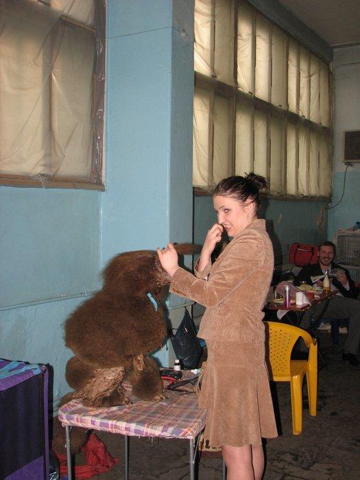В Мариуполе прошли сразу две выставки собак (ФОТО) , фото-16