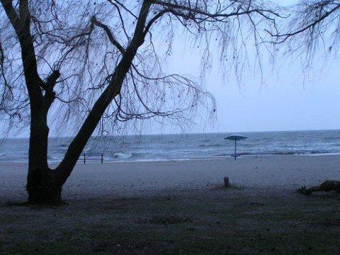 В Мариуполе спасатели очищают акваторию Азовского моря, фото-1