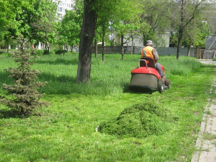 Мариуполь избавляют от лишней травы (ФОТО), фото-3