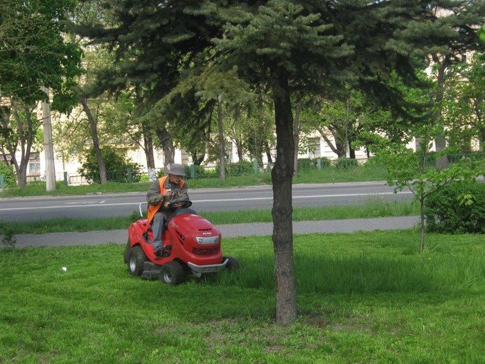 Мариуполь избавляют от лишней травы (ФОТО), фото-2