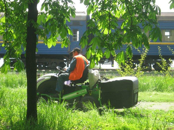 Мариуполь избавляют от лишней травы (ФОТО), фото-6