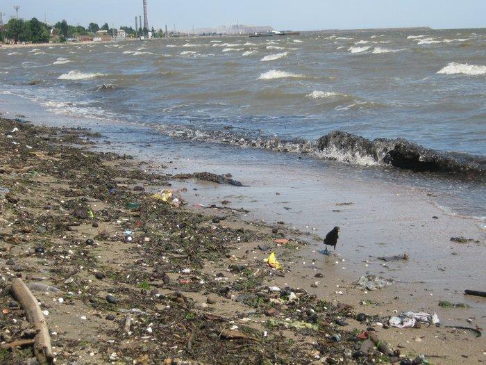 Отдыхающие на морском побережье в Мариуполе ничего не слышали о холере (ФОТО), фото-11