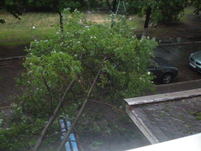 Гроза в Мариуполе обесточила несколько десятков домов, повалила дерево и остановила ильичевскую аглофабрику (ФОТО), фото-1