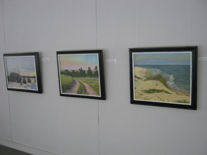 Мариупольские художники передали краски Приазовья в живописи и графике (ФОТО), фото-6