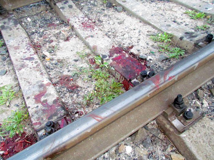В курортной зоне Мариуполя поезд отрезал парню обе ноги (ФОТО), фото-7