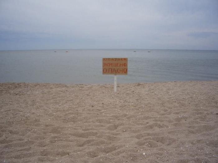 Исследователи нашли причину трагических смертей на мелководье в пос. Юрьевка (ФОТО), фото-1