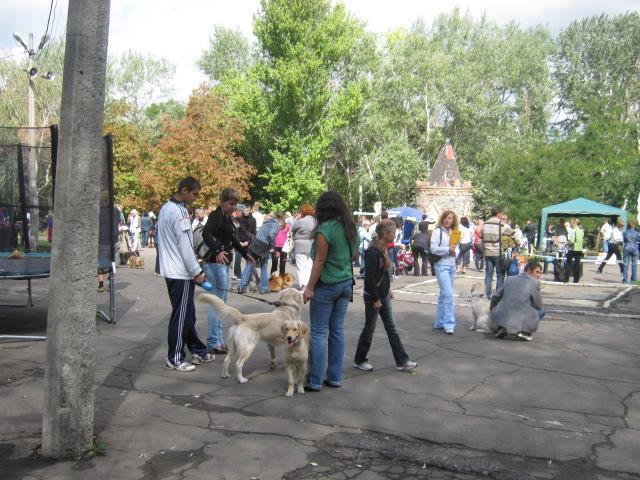 В Мариуполе лучшими племенными псами признаны доберман, цвергшнауцер и мопсы (ФОТОРЕПОРТАЖ), фото-25