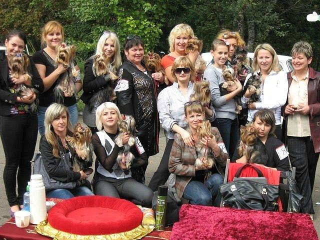 В Мариуполе лучшими племенными псами признаны доберман, цвергшнауцер и мопсы (ФОТОРЕПОРТАЖ), фото-7