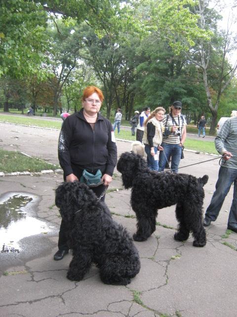 В Мариуполе лучшими племенными псами признаны доберман, цвергшнауцер и мопсы (ФОТОРЕПОРТАЖ), фото-3