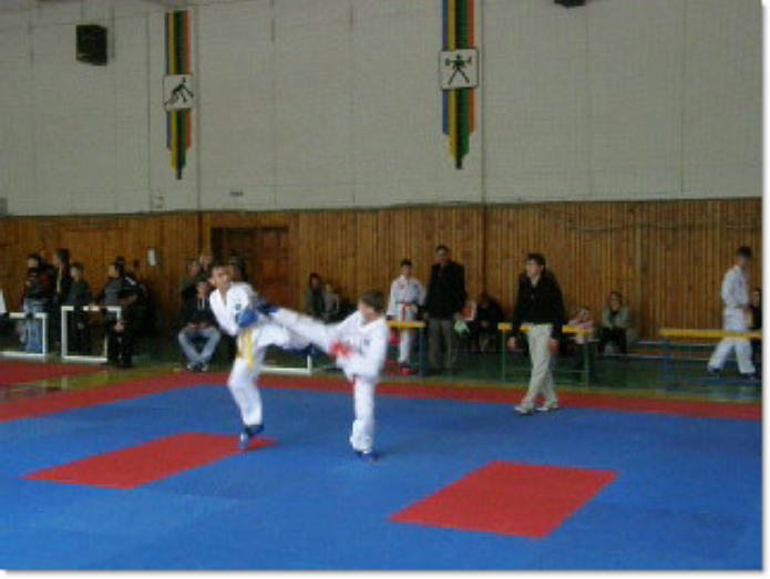 В Мариуполе завершились городские соревнования по TAEKWON-DO , фото-1