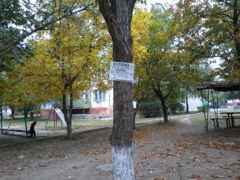 Мариупольцам не хватает столбов - клеят объявления уже прямо на деревьях (ФОТО), фото-1