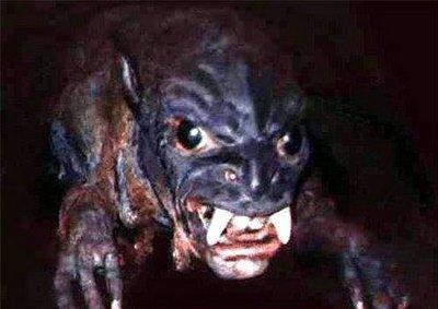 Под Мариуполем объявилась чупакабра. Неизвестный зверь разрывает кур и кроликов, фото-1