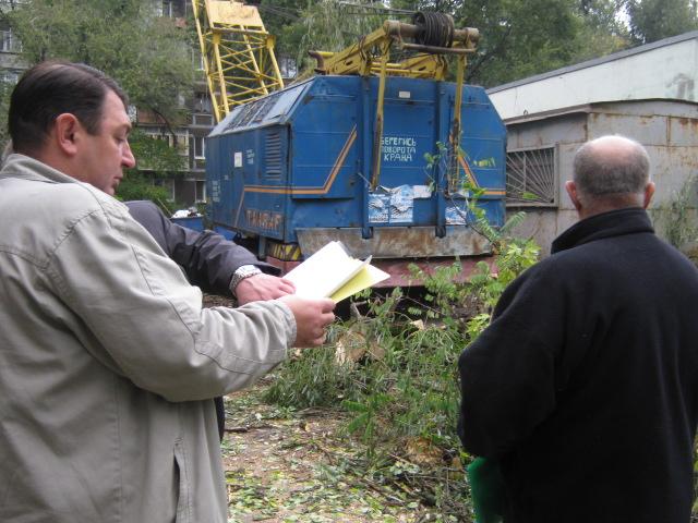 В Мариуполе спилили пять 15-метровых деревьев ради строительства магазина (ФОТО), фото-5