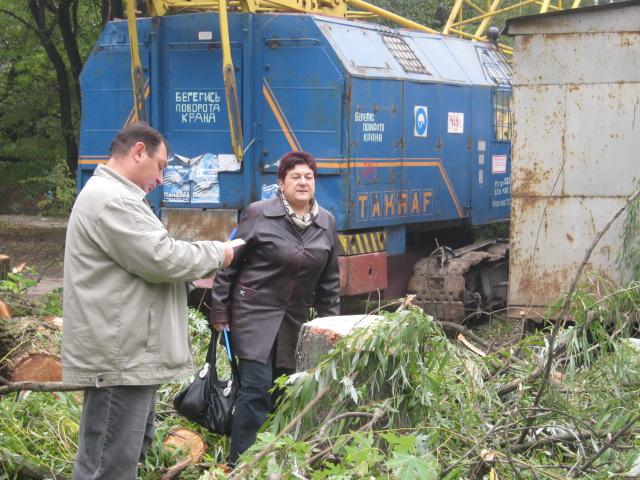 В Мариуполе спилили пять 15-метровых деревьев ради строительства магазина (ФОТО), фото-8