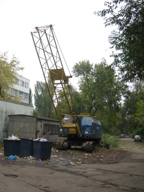 В Мариуполе спилили пять 15-метровых деревьев ради строительства магазина (ФОТО), фото-3