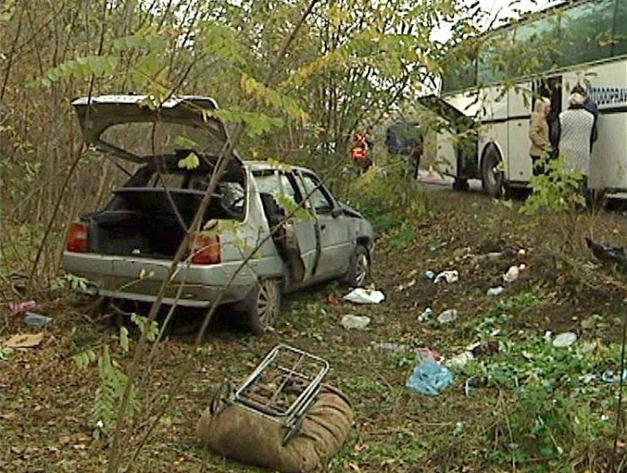 «Таврия» сбила на остановке 10 пассажиров автобуса «Мариуполь - Северодонецк» (ФОТО), фото-9