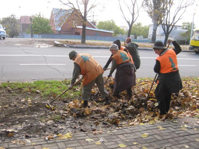 Мариупольские коммунальщики ждут, когда деревья обнажатся (ФОТО), фото-1