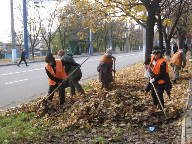 Мариупольские коммунальщики ждут, когда деревья обнажатся (ФОТО), фото-2