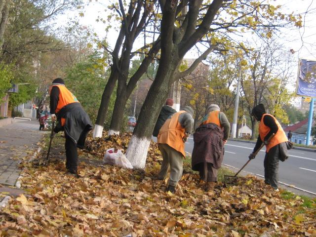Мариупольские коммунальщики ждут, когда деревья обнажатся (ФОТО), фото-4