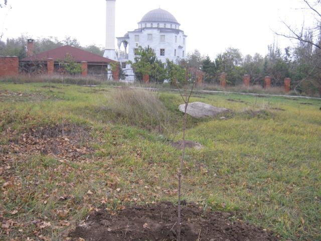 Мариупольцы  массово вышли на борьбу с опавшей листвой (ФОТО), фото-12