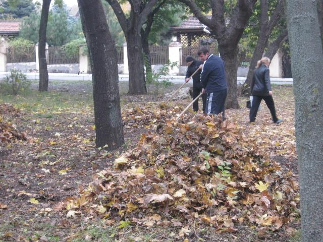 Мариупольцы  массово вышли на борьбу с опавшей листвой (ФОТО), фото-3