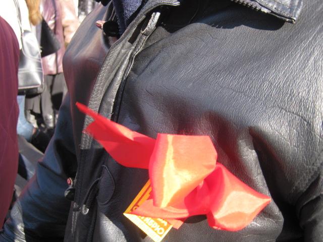 В Мариуполе коммунисты призвали граждан к возвращению в СССР  (ФОТО) , фото-5