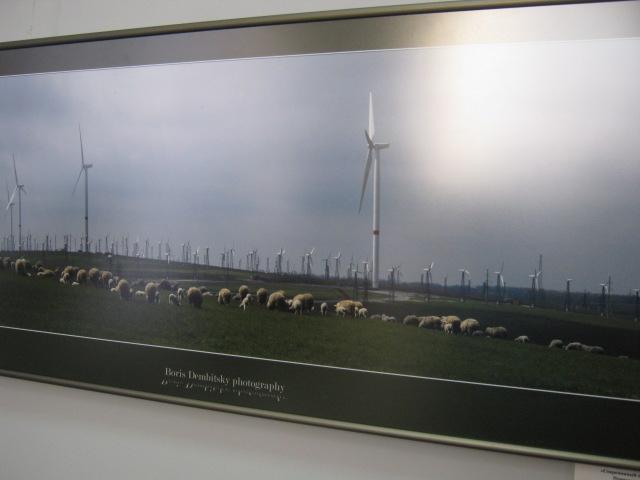 В Мариуполе открылась фотовыставка «говорящих» степей, морей и красных маков (ФОТО), фото-2