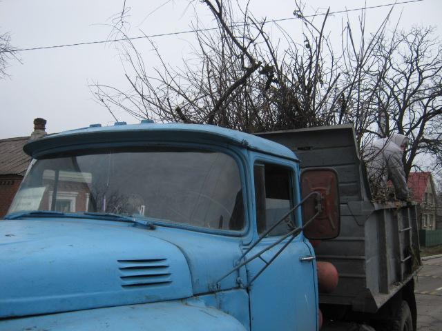 Коммунальные службы «причесывают» Мариуполь к Рождеству (ФОТО), фото-2