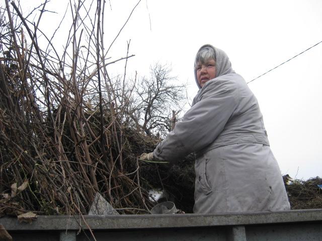 Коммунальные службы «причесывают» Мариуполь к Рождеству (ФОТО), фото-3