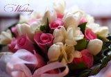 Предложения для всех влюбленных от свадебного агентства «Amur»!, фото-1