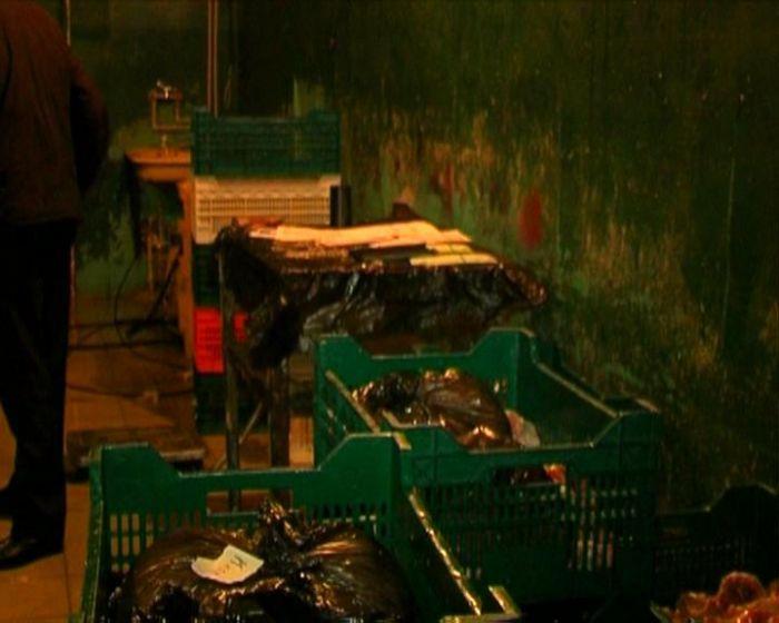 СБУ и милиция изъяли 5 тонн «формальдегидных» кур и задержали их владельцев ( ФОТО), фото-1