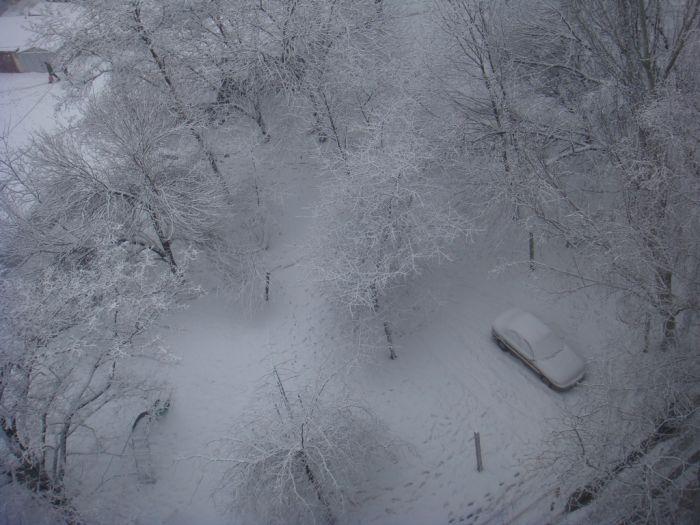 зима 10
