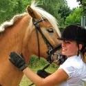 horse21315902425