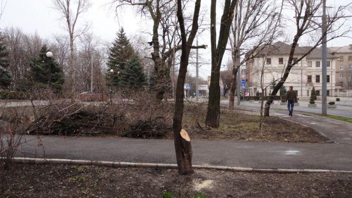 В центре Мариуполя вырубили деревья, высаженные в честь тех, кто не вернулся с войны (ФОТО+Видео), фото-6