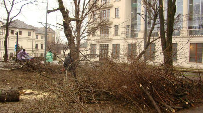 В центре Мариуполя вырубили деревья, высаженные в честь тех, кто не вернулся с войны (ФОТО+Видео), фото-1