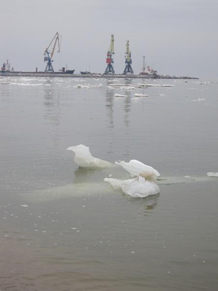 Мариупольцы высадились на льдину в Азовском море (ФОТО), фото-3